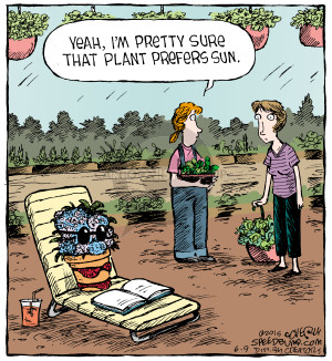 Comic Strip Dave Coverly  Speed Bump 2015-06-09 gardening