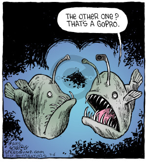 Comic Strip Dave Coverly  Speed Bump 2015-07-06 aquatic
