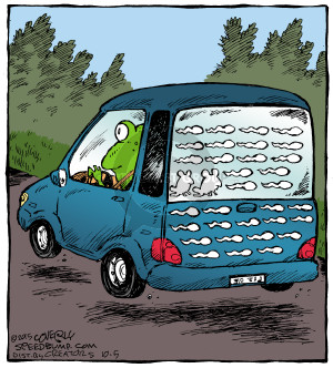 Comic Strip Dave Coverly  Speed Bump 2015-10-05 frog