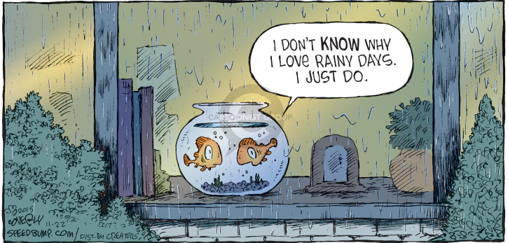 Comic Strip Dave Coverly  Speed Bump 2015-11-22 wet