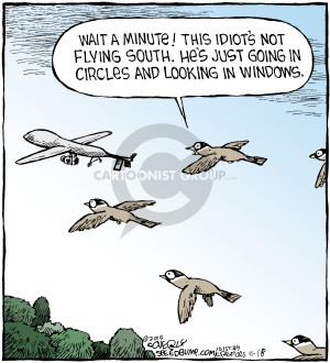 Wait a minute! This idiots not flying south. Hes just going in circles and looking in windows.