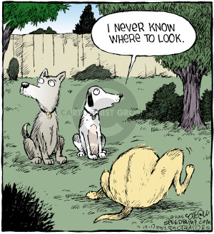 Comic Strip Dave Coverly  Speed Bump 2015-12-17 privacy