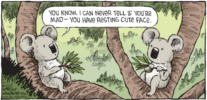 Comic Strip Dave Coverly  Speed Bump 2016-03-13 emotion