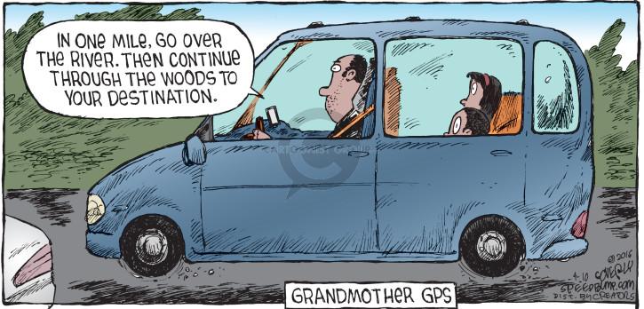 Comic Strip Dave Coverly  Speed Bump 2016-04-10 grandparent