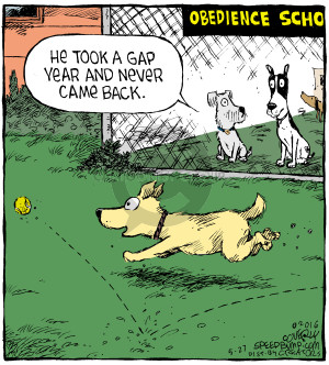 Cartoonist Dave Coverly  Speed Bump 2016-05-27 college