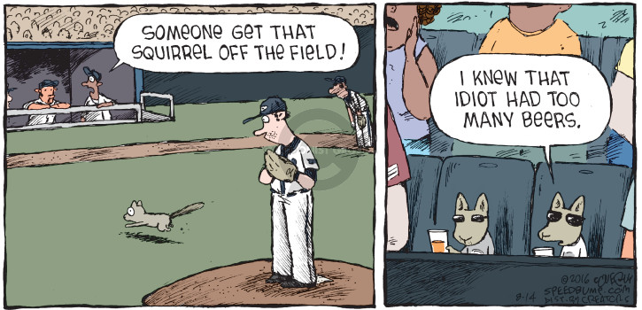 Someone get that squirrel off the field! I knew that idiot had too many beers.