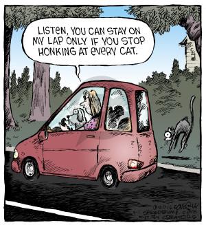 Comic Strip Dave Coverly  Speed Bump 2016-09-01 cat