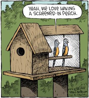 Comic Strip Dave Coverly  Speed Bump 2016-09-23 bird