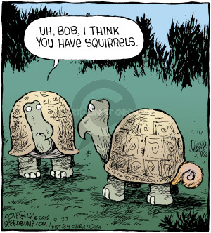 Comic Strip Dave Coverly  Speed Bump 2016-09-27 turtle