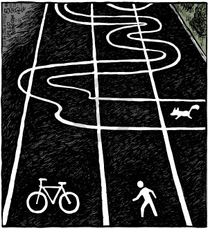 No caption (Various parallel paths are marked for walking and biking, whereas a path marked for dogs is erratic rather than straight).
