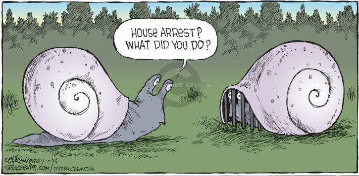 Comic Strip Dave Coverly  Speed Bump 2017-03-26 house