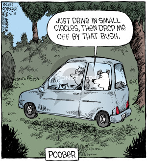 Comic Strip Dave Coverly  Speed Bump 2017-05-31 then