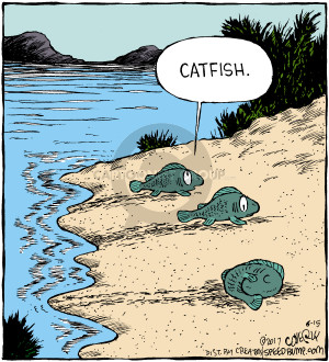 Comic Strip Dave Coverly  Speed Bump 2017-06-15 fish