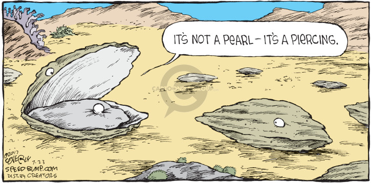 Comic Strip Dave Coverly  Speed Bump 2017-07-23 not
