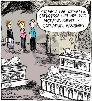 Comic Strip Dave Coverly  Speed Bump 2017-08-16 architecture
