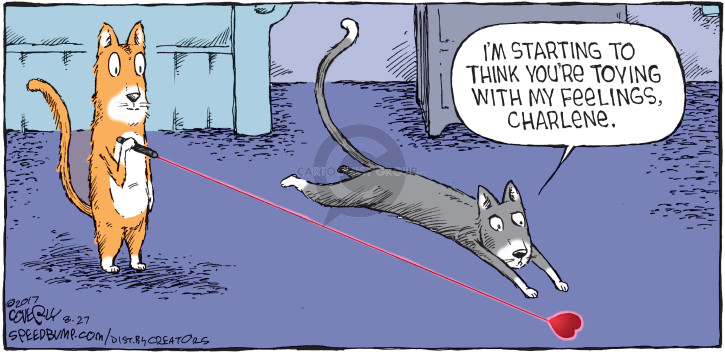 Comic Strip Dave Coverly  Speed Bump 2017-08-27 cat toy