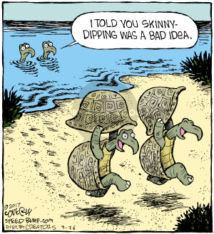 Comic Strip Dave Coverly  Speed Bump 2017-09-26 bare