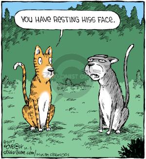Comic Strip Dave Coverly  Speed Bump 2017-10-05 cat