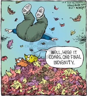 Comic Strip Dave Coverly  Speed Bump 2017-10-06 fall autumn