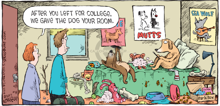Cartoonist Dave Coverly  Speed Bump 2017-10-08 college