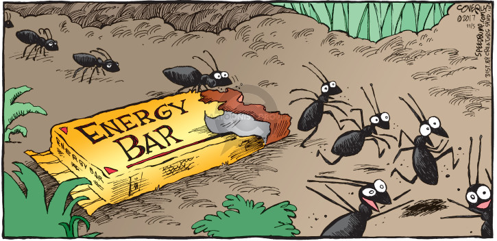 Comic Strip Dave Coverly  Speed Bump 2017-11-05 energy