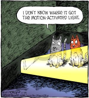 Comic Strip Dave Coverly  Speed Bump 2017-11-24 cat