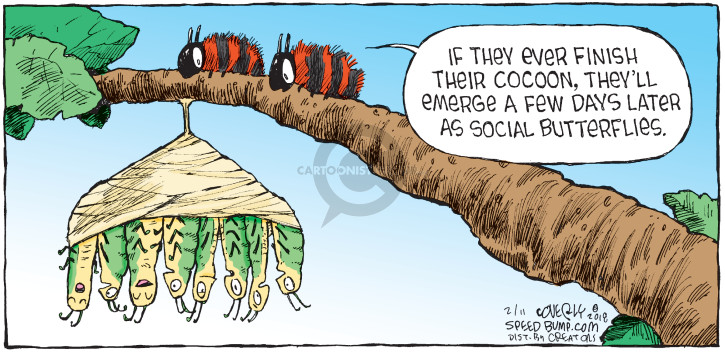 Comic Strip Dave Coverly  Speed Bump 2018-02-11 day