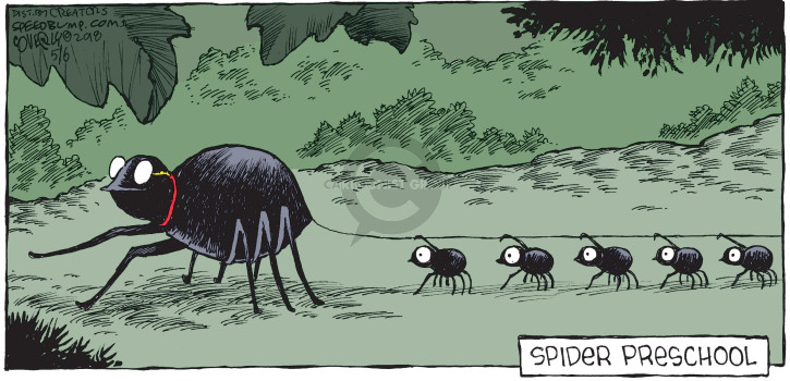 Comic Strip Dave Coverly  Speed Bump 2018-05-06 school