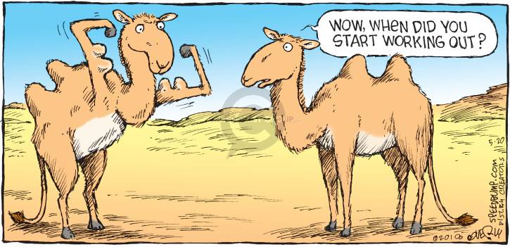 Comic Strip Dave Coverly  Speed Bump 2018-05-20 exercise