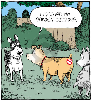 Comic Strip Dave Coverly  Speed Bump 2018-07-02 online privacy