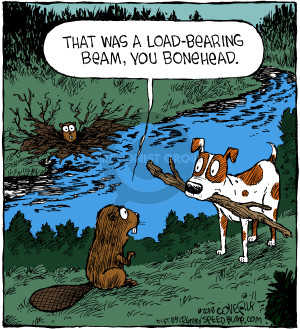 Comic Strip Dave Coverly  Speed Bump 2018-08-11 construction