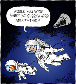 Comic Strip Dave Coverly  Speed Bump 2018-10-11 astronaut