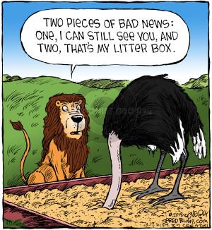 Comic Strip Dave Coverly  Speed Bump 2018-10-12 cat litter