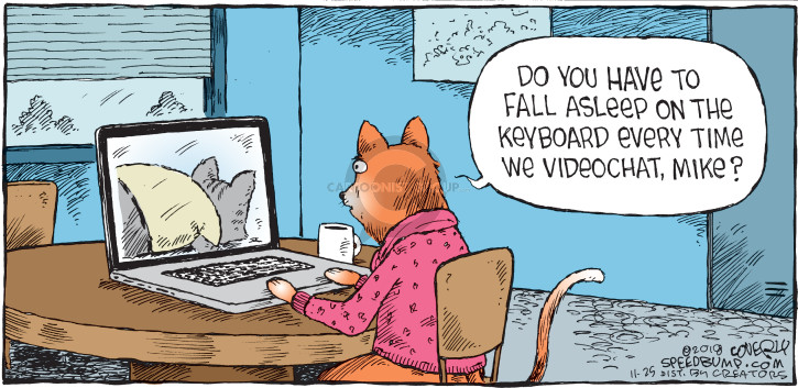 Comic Strip Dave Coverly  Speed Bump 2018-11-25 internet