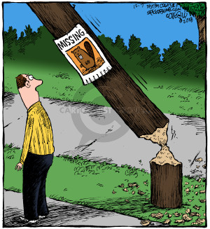 Cartoonist Dave Coverly  Speed Bump 2018-12-07 miss