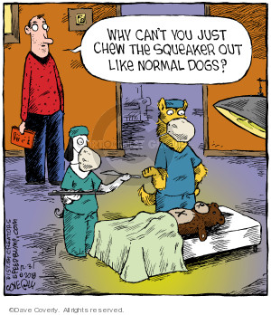 Comic Strip Dave Coverly  Speed Bump 2018-12-31 dog