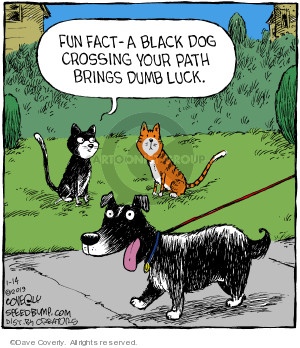 Fun fact - A black dog crossing your path brings dumb luck.