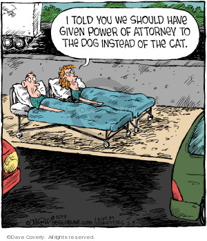 Comic Strip Dave Coverly  Speed Bump 2019-02-05 attorney
