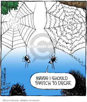 Comic Strip Dave Coverly  Speed Bump 2019-02-16 should