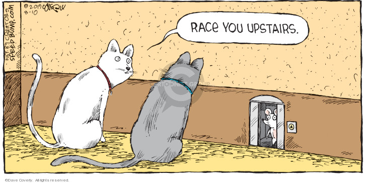 Race you upstairs.