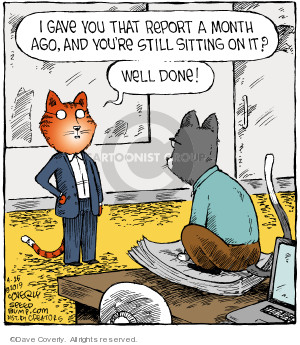 Comic Strip Dave Coverly  Speed Bump 2019-04-26 cat