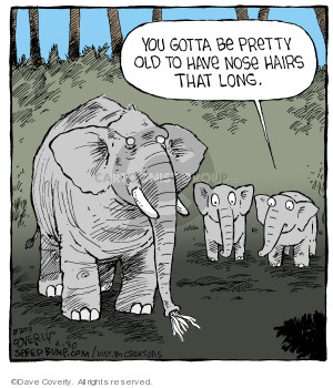Comic Strip Dave Coverly  Speed Bump 2019-04-30 age