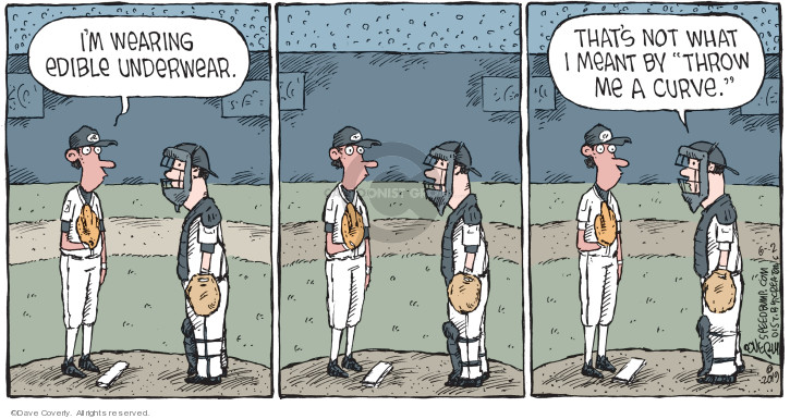 Comic Strip Dave Coverly  Speed Bump 2019-06-02 baseball