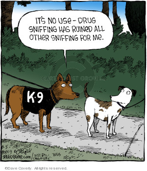 Comic Strip Dave Coverly  Speed Bump 2019-08-05 dog