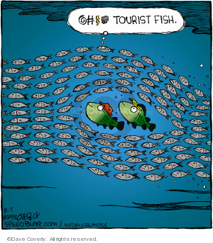 Comic Strip Dave Coverly  Speed Bump 2019-08-07 fish