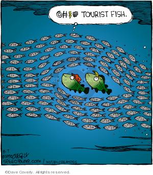 @#$% tourist fish.