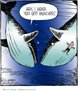 Cartoonist Dave Coverly  Speed Bump 2019-10-15 whale