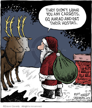 Comic Strip Dave Coverly  Speed Bump 2019-12-19 reindeer