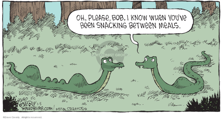 Comic Strip Dave Coverly  Speed Bump 2020-01-05 eat