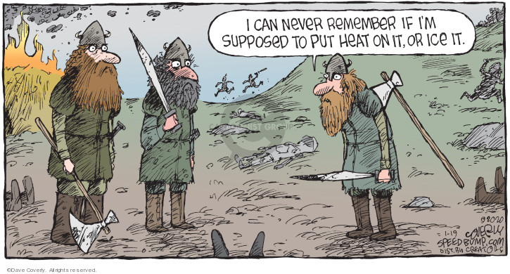 Comic Strip Dave Coverly  Speed Bump 2020-01-19 remember